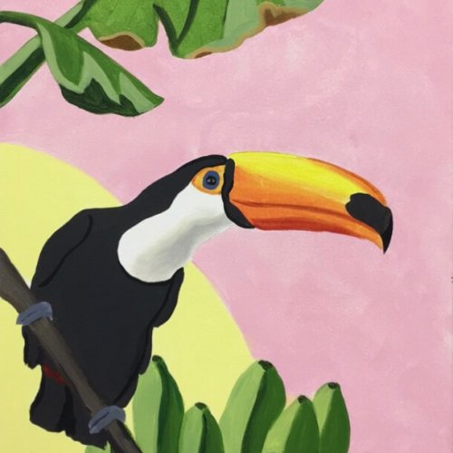 'You can, Toucan'