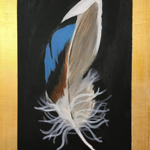 'Duck feather'